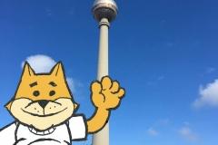 Bob In Berlin